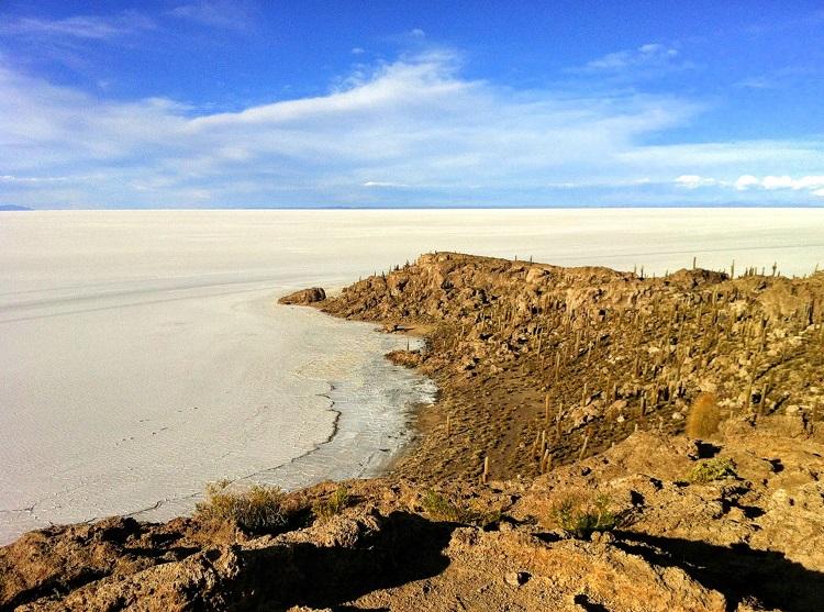 Inca Huasi (Fish Island) Uyuni Bolivia