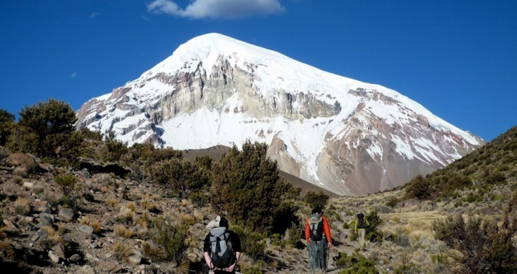 Nature And Wildlife Itinerary For Bolivia Bolivian Life