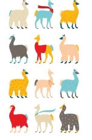 llama gift bolivia (2)