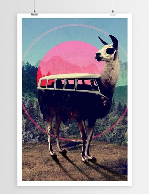 llama gift bolivia 3