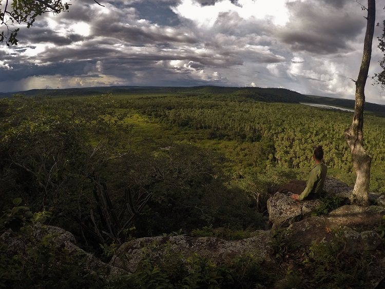 San Miguelito Jaguar Conservation Reserve